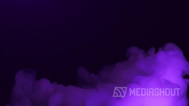 Vivid Haze Purple