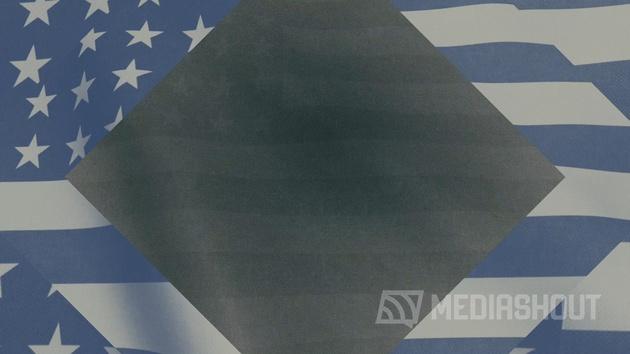 Vintage Waving American Flag 04