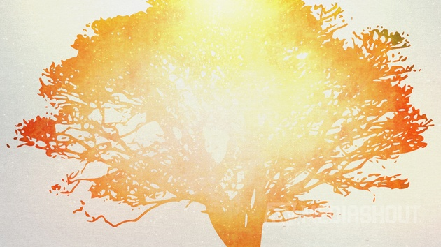 Tree of Life Orange 1