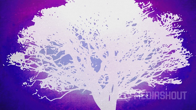 Tree of Life Purple 2